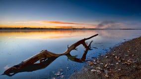 Zonsopgang waterlog Stock Foto