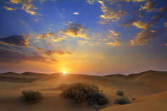 Zonsopgang in woestijn royalty-vrije stock afbeeldingen