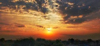 Zonsopgang in wolk met vogel en landbouwbedrijfbeweging stock foto's