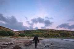 Zonsopganggang op strand met hond stock foto