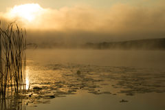 Zonsopgangmist op de rivier in sepia wordt geschilderd die Stock Foto