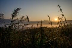 Zonsopgangscène met berg en overzees van mist Stock Foto's