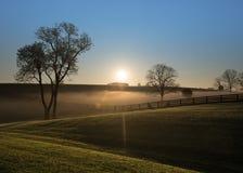 Zonstijgingen over Mistige Heuvels van Kentucky royalty-vrije stock foto's
