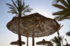Zonstralen die door gaten van houten paraplu op het strand glanzen stock foto's