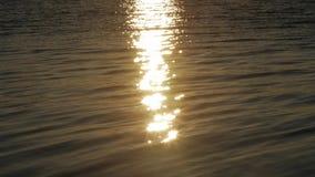 Zonweg Hoog-contrast met lichte bezinning in het water vóór de zonsondergang wordt geschoten die stock video