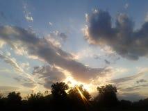 Zonwolken en bomen royalty-vrije stock foto's