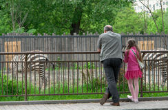 In zoo. Father with daughter in zoo stock photos