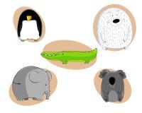 zoo Vektor Illustrationer