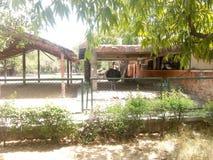 zoo στοκ εικόνα με δικαίωμα ελεύθερης χρήσης