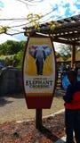 zoo obrazy royalty free