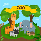 Zoo. Pictures of animals gathered at the zoo vector illustration