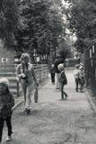 zoo photo stock