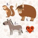 Zoo alphabet with funny animals. X, y, z letters. Xerus, yak, zo Royalty Free Stock Photos