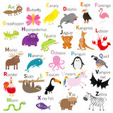 Zoo animal alphabet. Cute cartoon character set. White background. Baby children education. Butterfly, dolphin, flamingo, jaguar, Royalty Free Stock Photos