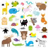 Zoo animal set. Cute cartoon character collection. Isolated. White background. Baby children education. Alligator, bear, cat, duck Stock Image