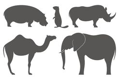 Zoo. Animal. Vector illustration EPS Stock Photography