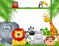 Zoo animals cartoon Stock Photos