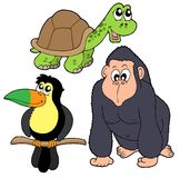 Zoo animals collection 4. Vector illustration Royalty Free Stock Photo