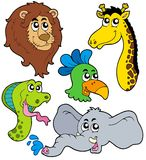ZOO animals collection 6 vector illustration