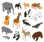 Zoo Animals Isometric Set royalty free illustration