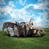 Zoo Animals on Nature Background. A group of animals are together on a nature background with text area. Animals range from an elephant, zebra, bear and rhino stock photos