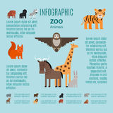 Zoo animals vector infographic Royalty Free Stock Photography
