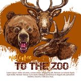 Zoo animal banner with sketched bear, dear and elk Royalty Free Stock Images