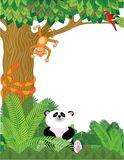 Zoo Border. A border with zoo animals - panda,snake,orangutan,and parrot