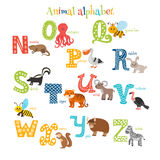 Zoo. Cute cartoon animals alphabet from N to Z in cartoon style Royalty Free Stock Photography