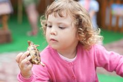 Zoo de contact, tortues dans des mains d'enfants Photo stock