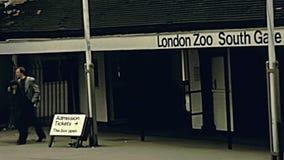 Zoo de Londres clips vidéos