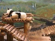 Zoo di Toronto Fotografie Stock