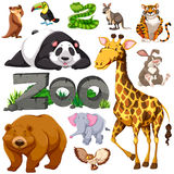 Zoo and different types of wild animals Stock Photos