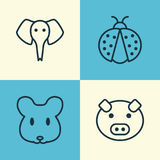 Zoo Icons Set. Collection Of Ladybird, Piglet, Trunked Animal And Other Elements. Also Includes Symbols Such As Ladybird Stock Photos