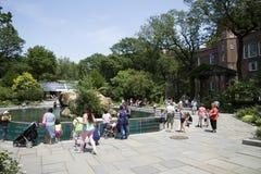 Zoo New York U.S.A. del Central Park Immagini Stock