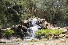 Zoo occidental de plaines de Taronga dans Dubbo, Australie Photographie stock