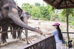 Zoo ouvert de Khao Kheow Photos libres de droits