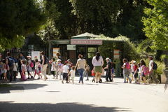 Zoo rome. Many children at the entrance to the zoo in rome, bioparco Royalty Free Stock Photography