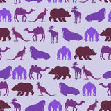 Zoo seamless Patten. Color background of wild beasts.  Royalty Free Stock Photo
