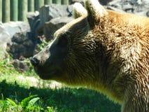 Zoo Servion und Tropiquarium von Servion - 2017 lizenzfreie stockfotografie