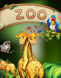 Zoo sign and many animals Stock Images