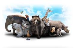 Zoo-Tier-Freunde Stockbild