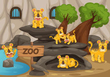Zoo and tiger. Illustration of a zoo and tiger vector stock illustration