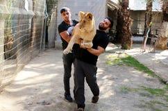 Zoo w Rafah daje gościom szansie bawić się z zwierzętami w strefa gazy obraz royalty free