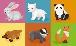 Zoo wild animals colorful set. Vector illustration Royalty Free Stock Photos