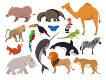 Zoo wild animals. Cute vector characters isolate on white Royalty Free Stock Photography