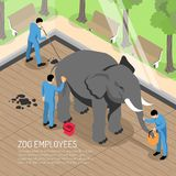 Zoo Workers Isometric Illustration vector illustration