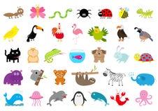 Zoo zwierzęcia domowego dzikiego zwierzęcia set charakter śliczny Mrówka, motyl, pająk, biedronka, pszczoła, jaguar, pieprzojad,  ilustracji