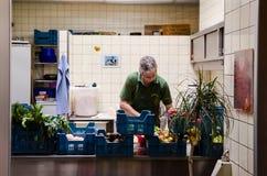 Zooarbeitskraft, die Mahlzeiten für die Tiere bei Berlin Zoo vorbereitet Lizenzfreies Stockbild