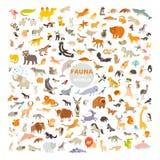 Zoogdieren van de wereld Extra grote geplaatste dieren stock illustratie